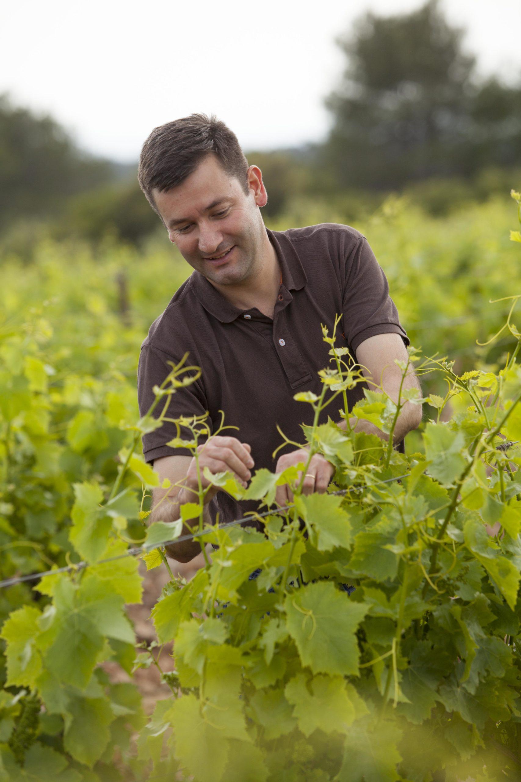 Reserve de Marande - Winemaker, Philippe Lebrun